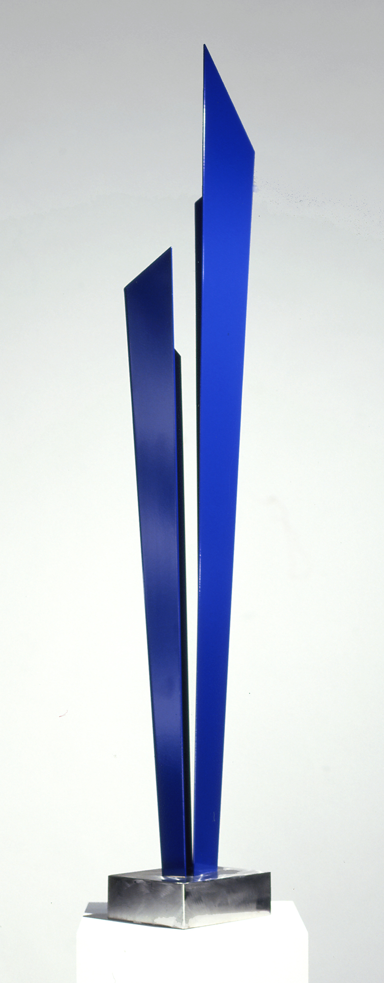 Blue Tall - stainless steel - powdered coated